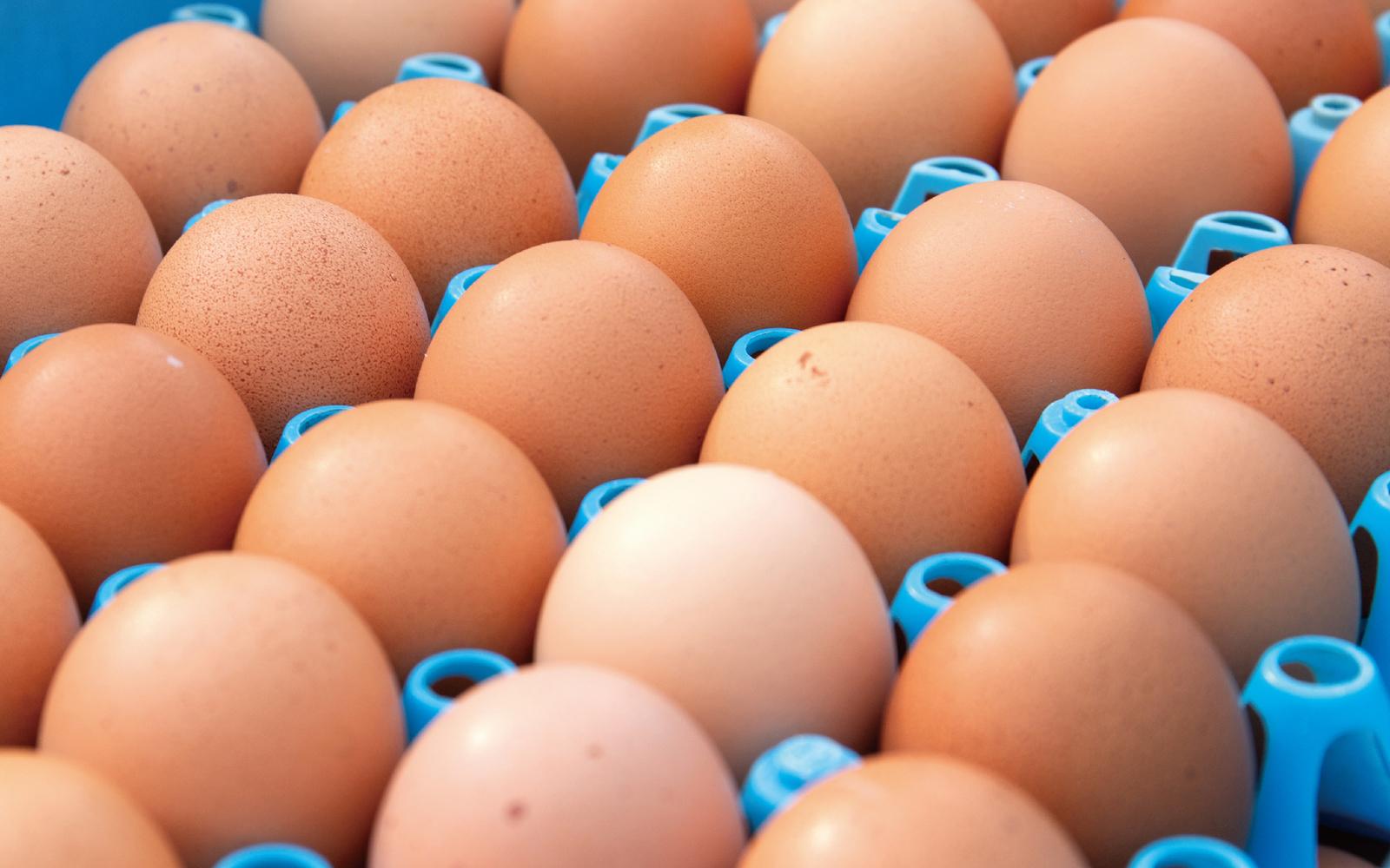 お菓子の要となる卵