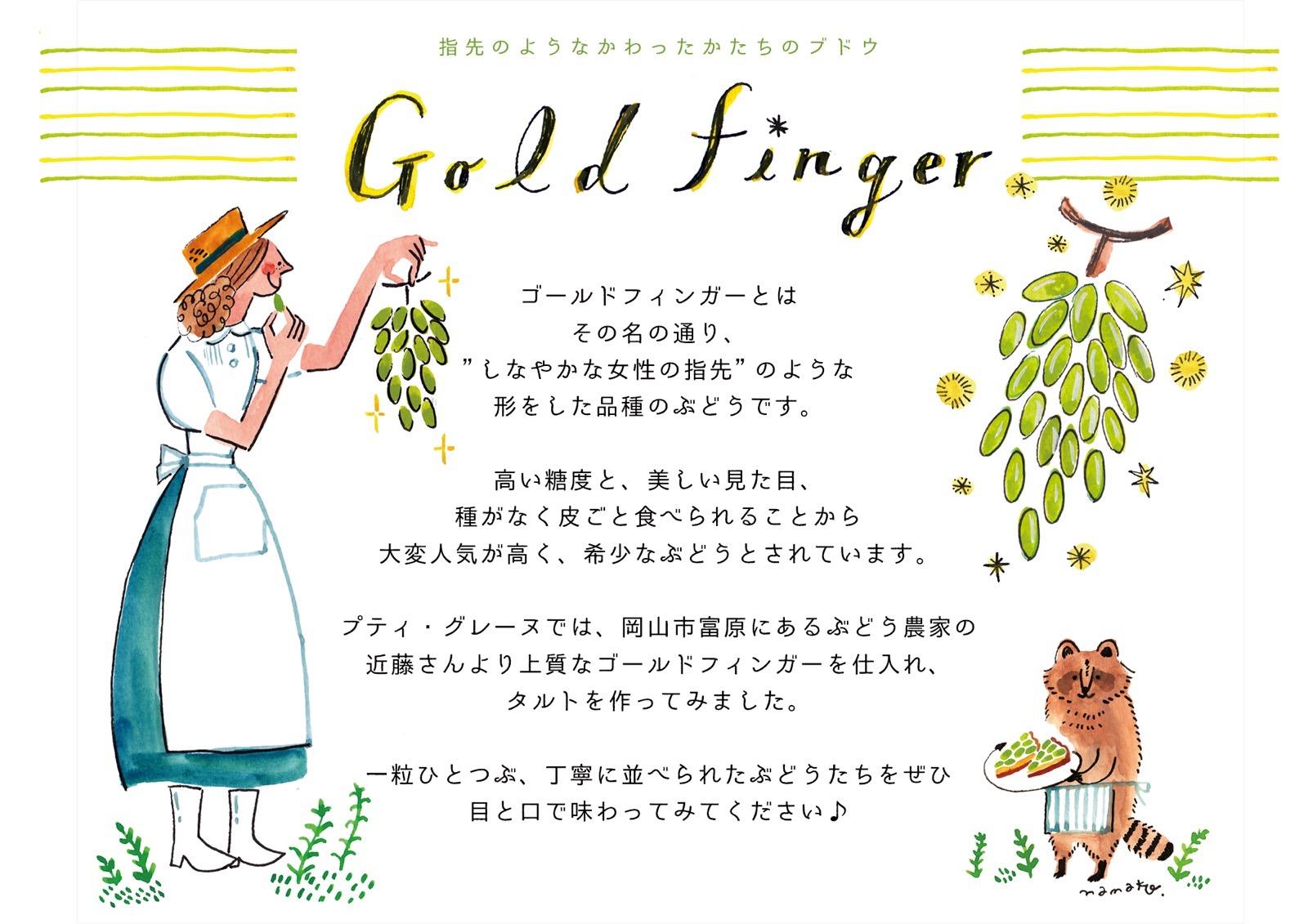 ゴールドフィンガーポップ